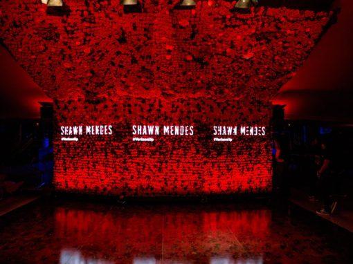 Verizon: <br>Shawn Mendes Surprise Verizon Concert